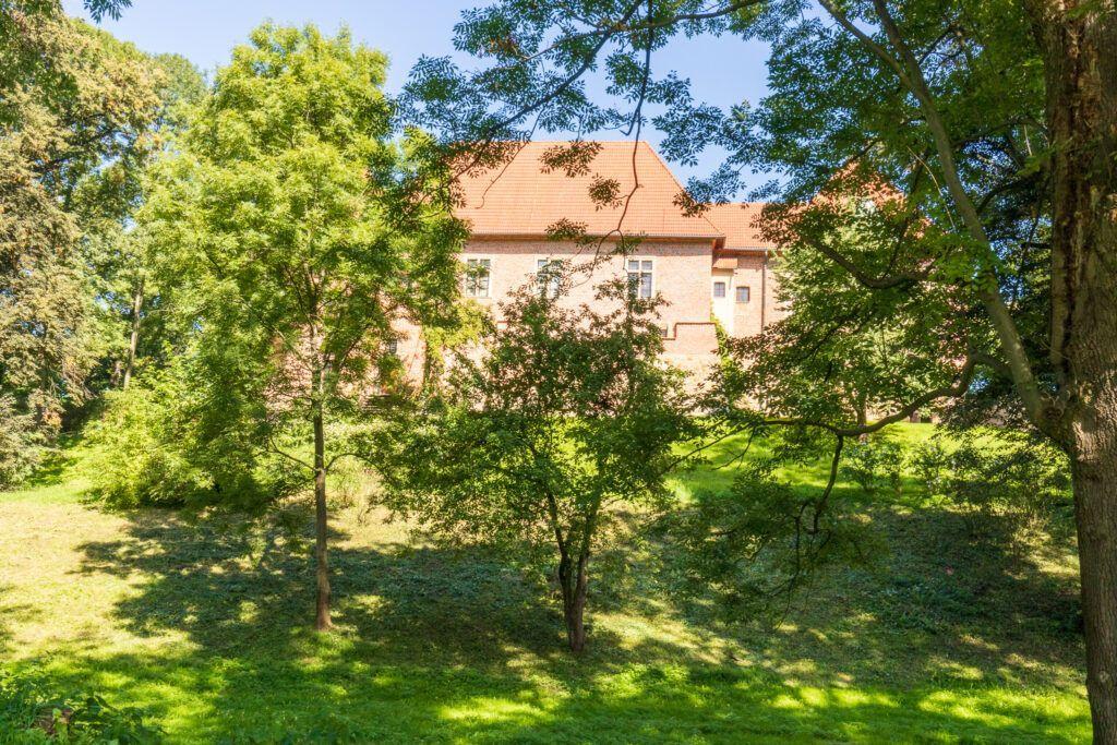 Zamek w Dębnie wśród drzew
